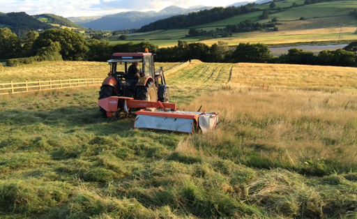 Collecting hay at Conwy's new meadow. © Plantlife
