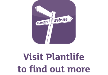 Visit Plantlife to find out more